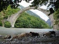 Η επανακατασκευή του γεφυριού της πλάκας ... ως πολιτιστικό χρέος απέναντι στις επόμενες γενιές !!!