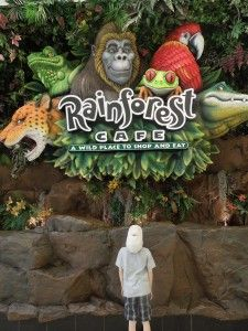 Have Kids Treat Them To A Jungle Experience At Rainforst Cafe The Mall Of Minneapolis Restaurantskid Friendly