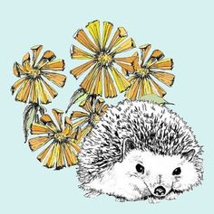 A Hedgehog in Our Flowers Illustration  Hedgehog by corelladesign, $20.00