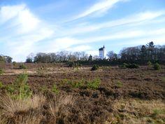2013-02-03  Jachthuis Palthe met heideveld vanaf de westzijde