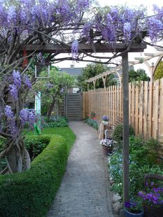 Wisteria Pergola Backyard - White Pergola With Roof - - Wooden Pergola Outdoor - - Wisteria Pergola, Pergola Swing, Deck With Pergola, Cheap Pergola, Covered Pergola, Backyard Pergola, Pergola Kits, Wooden Pergola, Pergola Shade