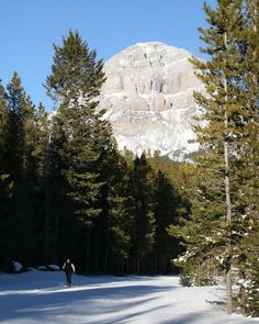 Cross-country skiing on the Allison-Chinook Lake trails. Over 30 km of track set all winter!