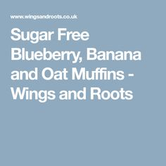 Sugar Free Blueberry, Banana and Oat Muffins - Wings and Roots
