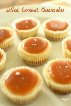 Salted Caramel Cheesecakes - mini cheesecakes that are perfect for feeding a crowd! : Salted Caramel Cheesecakes - mini cheesecakes that are perfect for feeding a crowd! Mini Desserts, Make Ahead Desserts, Bite Size Desserts, Desserts For A Crowd, Party Desserts, Delicious Desserts, Dessert Recipes, Elegant Desserts, Finger Food Desserts