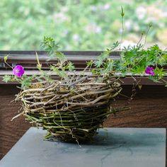 How to Make a Rustic Grapevine Basket Planter – Dan330