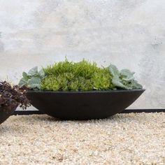 Lightweight Fibreglass Garden Planter Adezz Ceder Dish Black