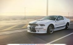 Ford Mustang Gt In Qatar