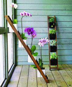 Kiikku planter — a walnut ladder about 4 feet long and just over 6 inches wide that tilts against any wall to hold four black or white vitreous porcelain pots