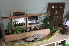 nature center box