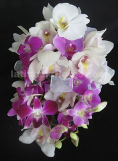 DENDROBIUM orchids for weddings | dendrobium, phaleanopsis and cymbidium orchids #wedding ... | Wedding ...