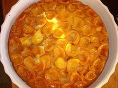 loquat cake - yum!