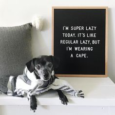 Being super lazy is my superpower. ⚡️ letterfolk, letterfolkquotes Word Board, Quote Board, Message Board, Felt Letter Board, Jolie Phrase, Handlettering, Lazy Quotes, Funny Quotes, Me Quotes
