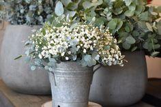 Mariage N & F bouquet, mariage , bouquet mariage, gypsophile, eucalyptus, cute, cute wedding, white bouquet Wedding White, Vase, Plants, Endurance, Deco Table, Babys, Bouquets, Gardens, Wedding