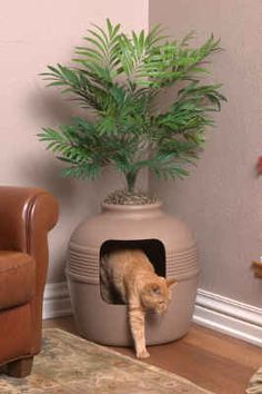 Awesome idea to conceal the litter box: ) http://www.thegreatestgift.com/images/2390Hidden%2520Litter%2520Box%2520-%2520Palm%2520Tree.jpg ---