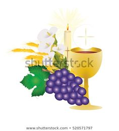 First communion vector color design illustration, with vine grapes and wheat ears and a candle, with white flowers and chalice with a host Illustration, First Communion, White Flowers, Vines, Ears, Royalty Free Stock Photos, Candles, Catholic, Design