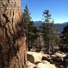 Big Bear Lake - Gray's Peak Trail - Fawnskin, CA, United States. Atop boulders with somewhat forested views of the lake and peaks beyond