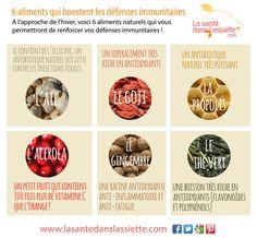 aliments_système_immunitaire