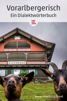 """""""Vorarlbergerisch"""" als Sprache gibt es eigentlich gar nicht. Jedes Tal, ja bisweilen jede Gemeinde, hat ihre sprachlichen Eigenheiten und Färbungen. Damit Ihnen das Einhören leichter fällt, haben wir diesen Leitfaden für Sie zusammengestellt. #dialekt #vorarlbergerisch #woerterbuch #visitvorarlberg #myvorarlberg Movies, Movie Posters, Communities Unit, Alps, Travel Advice, Language, Culture, Vacation, Films"""
