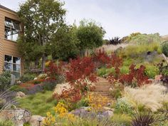 PRIVATE GARDEN (jury): The Painterly Approach by Arterra Landscape Architects
