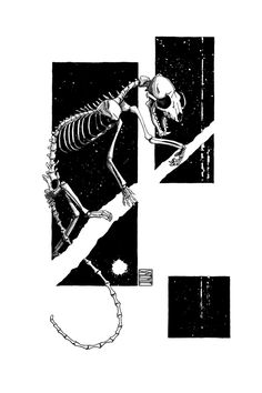 "Limited edition (10) token of Skeenee´s ""Marten Skeleton, by Skeenee"" available on  www.makersplace.com. #cryptoArt #skeenee #cryptoartist #skull #skullart Sumi Ink, Anatomy Drawing, Ink Painting, Skull Art, Blockchain, Skeleton, Digital Art, My Arts"