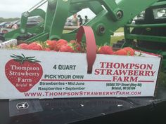 On our way back to Chicago, we passed by a farm called Thompson Strawberry Farm located at Bristol, Wisconsin.