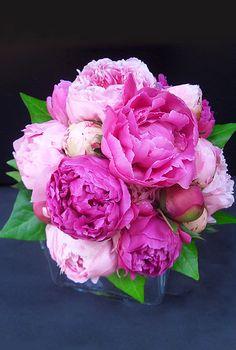 Peony bouquet: love, love, love!!!