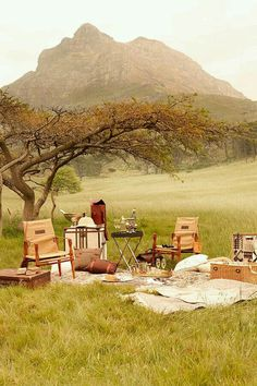 The African Safari is on everyone's should-do listing. Find the well-off scenery and diversified ethnicities of one of the most amazement-uplifting continents in the world Tanzania, Kenya, Africa Nature, South Africa Safari, Safari Wedding, Vintage Safari, Romantic Picnics, Romantic Dinners, Camping Places