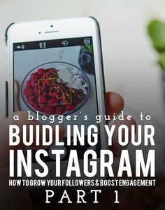 A Blogger's Guide to Building Your Instagram: Part 1 All the tips and tricks no one ever tells you