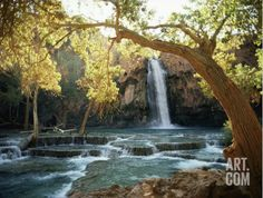 Scenic View of a Waterfull on Havasc Creek from Art.com.  Get your rebate from RebateGiant.