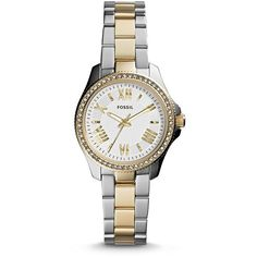 Fossil Cecile Small Two-Tone Stainless Steel Watch (330 BRL) ❤ liked on Polyvore featuring jewelry, watches, accessories, vintage watches, dial watches, roman numeral jewelry, fossil jewelry and stainless steel jewelry