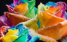 | 25 Colorful Rainbow Theme Conceptional Photos | Design Inspiration ...