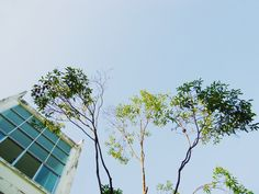 The Sky Over SSP, Streesmutprakan ,My High School  Photographer © Pukky 2014