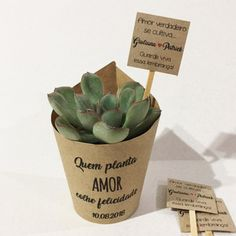 Succulent Favors, Teacher Appreciation Gifts, 50th Anniversary, Luau, Homemade Gifts, Cactus, Wedding Planning, Dream Wedding, Wedding Inspiration