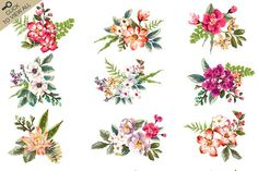 Hand-drawn flower collection Vol.2 - Illustrations