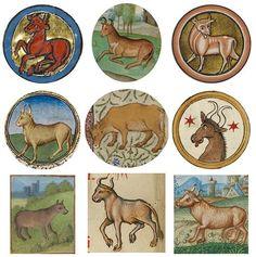 Independent, reliable + sensual Taurus (bull) from medieval calendars Neptune In Scorpio, Venus In Gemini, Taurus Moon, Taurus Art, Taurus Bull, Zodiac Signs Taurus, Medieval Manuscript, Medieval Art, Illuminated Manuscript
