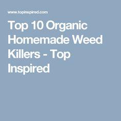Top 10 Organic Homemade Weed Killers - Top Inspired