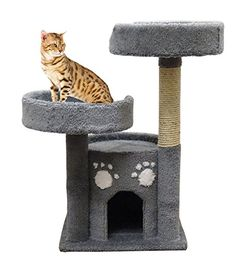 Kitty Condo Perch Scratching Sisal Post, Gray Carpet >>> Check out the image by visiting the link. (This is an affiliate link and I receive a commission for the sales) #CatCare