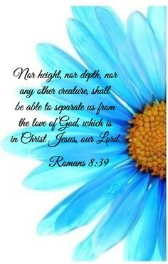 """neither height nor depth, nor anything else in all creation, will be able to separate us from the love of God that is in Christ Jesus our Lord. Bible Verses Quotes, Bible Scriptures, Faith Quotes, Prayer Verses, This Is A Book, Bible Truth, Jesus Is Lord, Spiritual Inspiration, Word Of God"