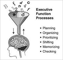 Executive Function and School Performance: A Century Challenge. Many children and TEENS with AD(H)D have problems with Executive Functioning - here are some helpful suggestions for parents Learning Tips, Brain Based Learning, Speech Language Pathology, Speech And Language, Working Memory, Executive Functioning, Social Thinking, Thinking Skills, School Psychology