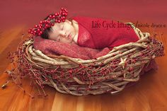 sweet holiday idea
