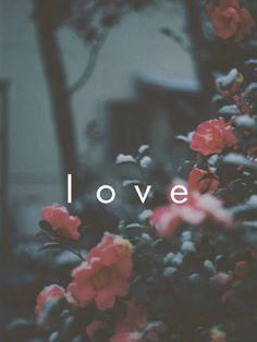 Love iPad Mini Resolution 768 x 1024