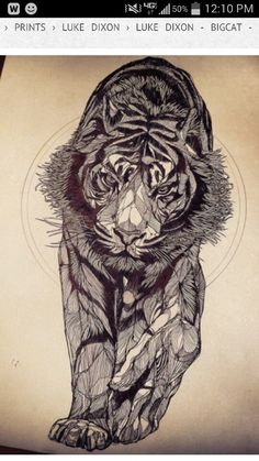 Tiger tattoo add a tail would be bad ass