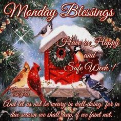 Have A Happy And Safe Week, Monday Blessings Quote Monday Greetings, Good Morning Greetings, Good Morning Good Night, Christmas Greetings, Merry Christmas, Monday Wishes, Christmas Blessings, Monday Blessings, Morning Blessings