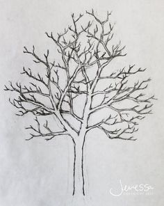 pictures of trees drawing | JMarieMi: How to draw a tree