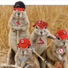 Buschy and the Rally Squirrel family.
