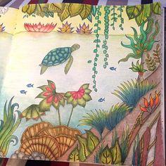#magicaljungle secretgarden #secretforestocean #johannabasford  #artsharecircle #coloringbyadults #beautifulcoloring #creativelycoloring #coloring_secrets #tabrakwarna #ekapresiwarna #adultcoloring #coloroftheday #instaart #instapic #kolorwanka #boracoloritop #coloriage #antistress #majesticcoloring #arttherapy #artecomoterapia #magicaljungle
