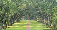 TREE TUNNELS AROUND THE WORLD Ѽ Oak Alley Plantation, Vacherie, Louisiana, on the Mississippi River © m-kojot/Getty Images