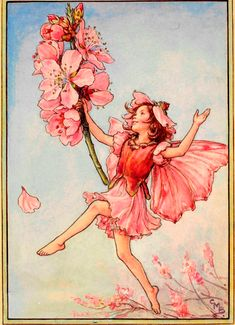 The Almond Blossom Fairy - Flower Fairies Fairy Paintings, Fantasy Paintings, Fantasy Art, Cute Fairy, Baby Fairy, Fairy Drawings, Cicely Mary Barker, Almond Blossom, Vintage Fairies