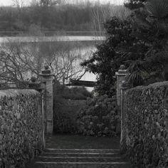 Tutto molto poetico ) #nikonitalia #nikon #photooftheday #picoftheday #d5300 #lake #nature #landscape #trees #lago #italy #outdoors #instagood #boat #travel #collettivoitalia