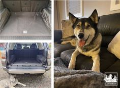 Pin On Canvasback Cargo Liners